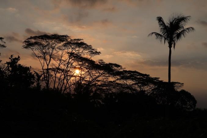 AMANJIWO: SUNSET
