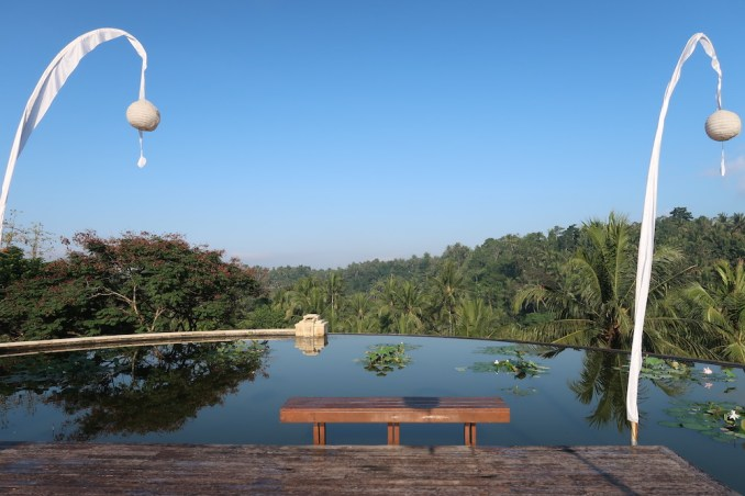FOUR SEASONS SAYAN: LOTUS POND ABOVE LOBBY