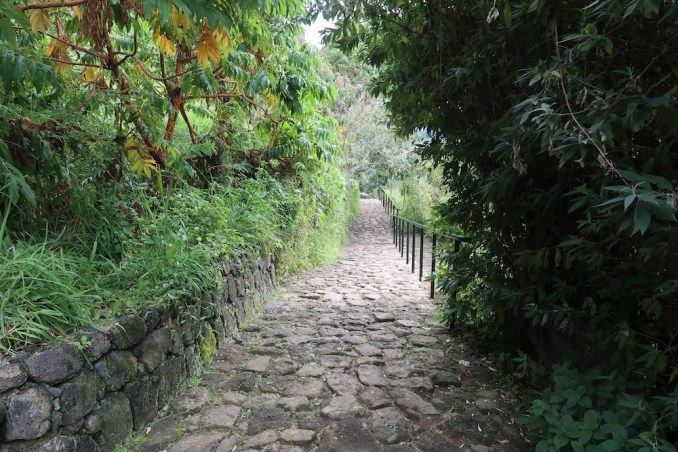 BISATE LODGE: PATH TO THE PAVILIONS