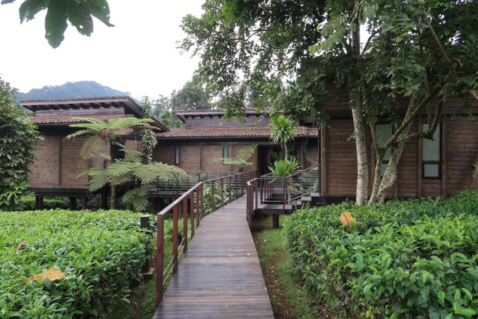 ONE&ONLY NYUNGWE HOUSE: PAVILIONS WITH ROOMS & SUITES