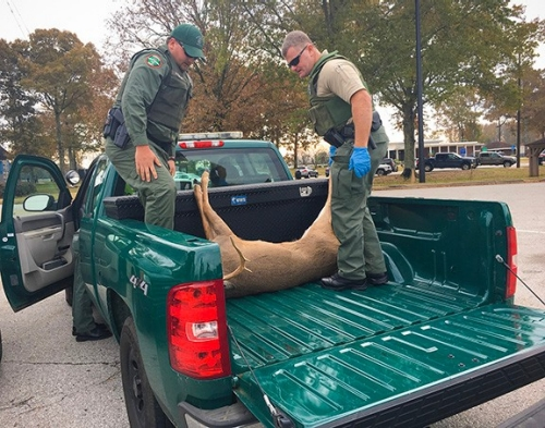 Wildlife officials remind hunters of import ban
