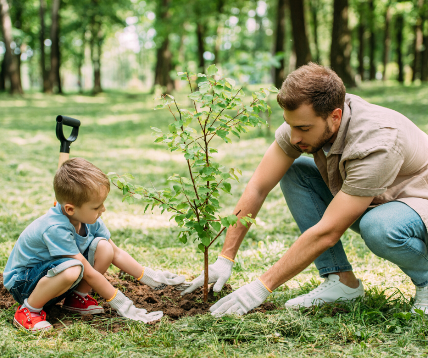 Join others across the state and plant a tree on Tennessee Tree Day