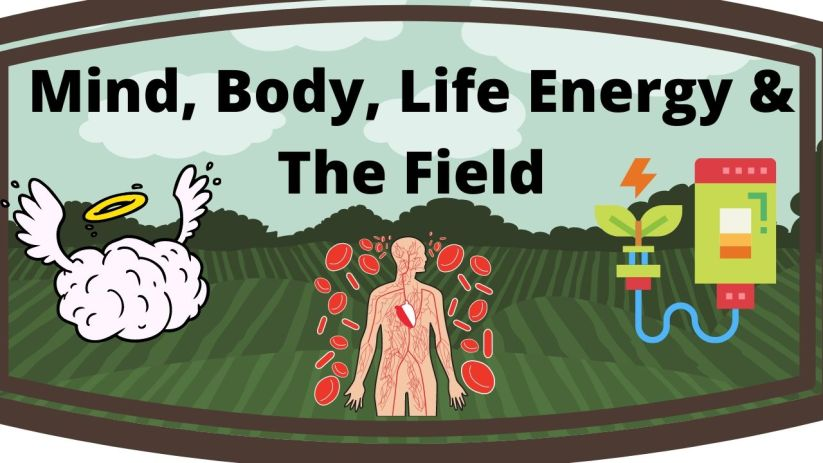 mind body life energy and the field