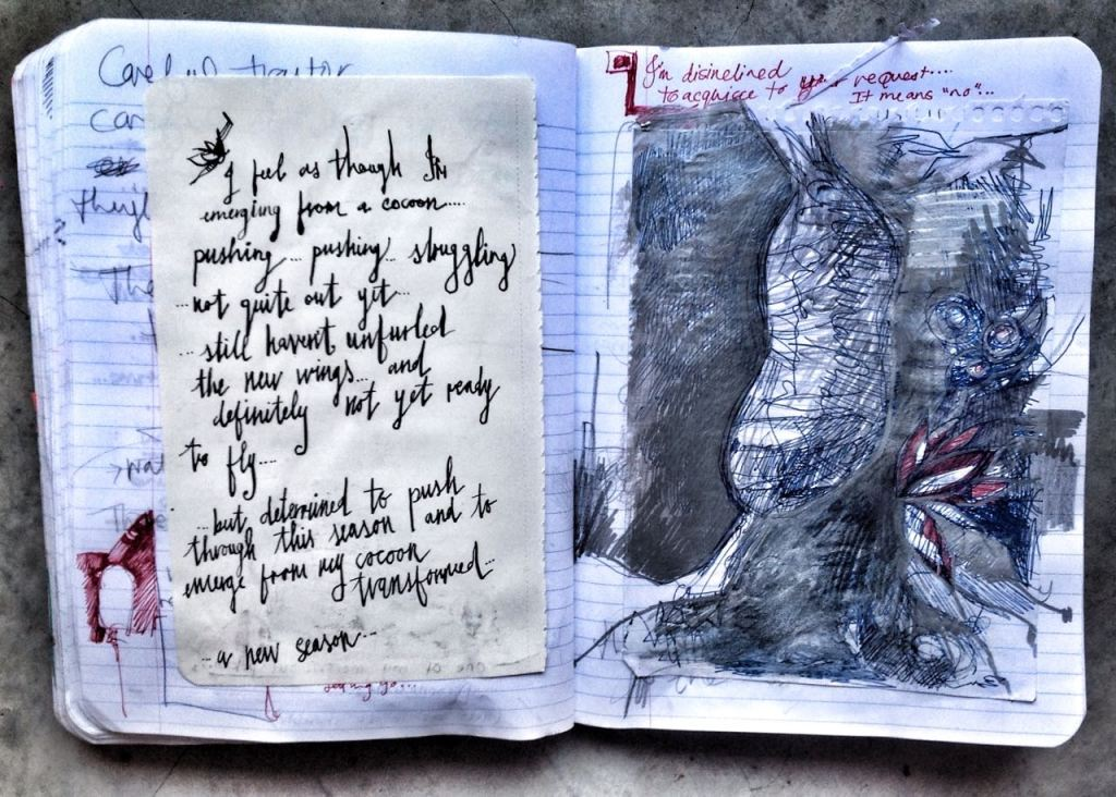I found myself drawing quite a few sketchy-messy cocoons in my art journals - and writing poems about what lies beneath...