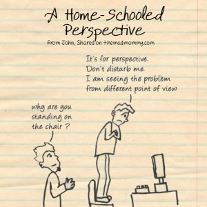 A Home-Schooled Perspective.
