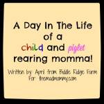 A Day In The Life of a Child and Piglet Rearing Momma!