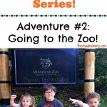 Summer Adventure Series: Going to the Zoo!