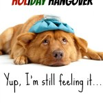The Holiday Hangover