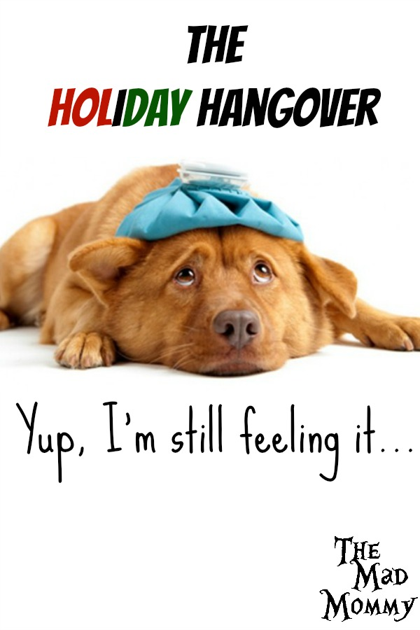 Yes, that magical week in between Christmas and New Year's when time has no relevance, sanity is lost and those damn twist ties from the toy packages show up EVERYWHERE! I call this period, the Holiday Hangover and yes, I am feeling it.