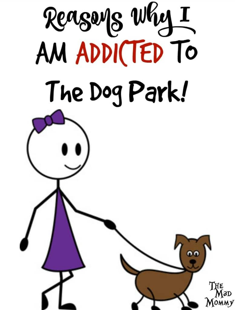 And this is why I am addicted to the dog park!