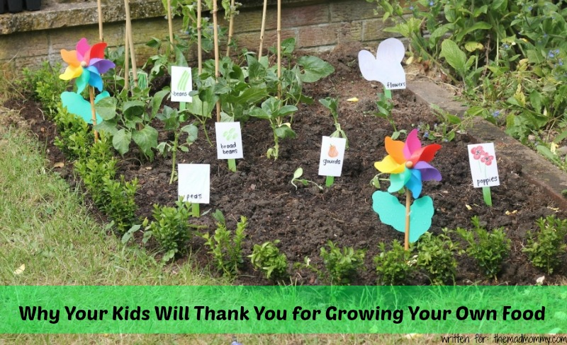 Why Your Kids Will Thank You for Growing Your Own Food