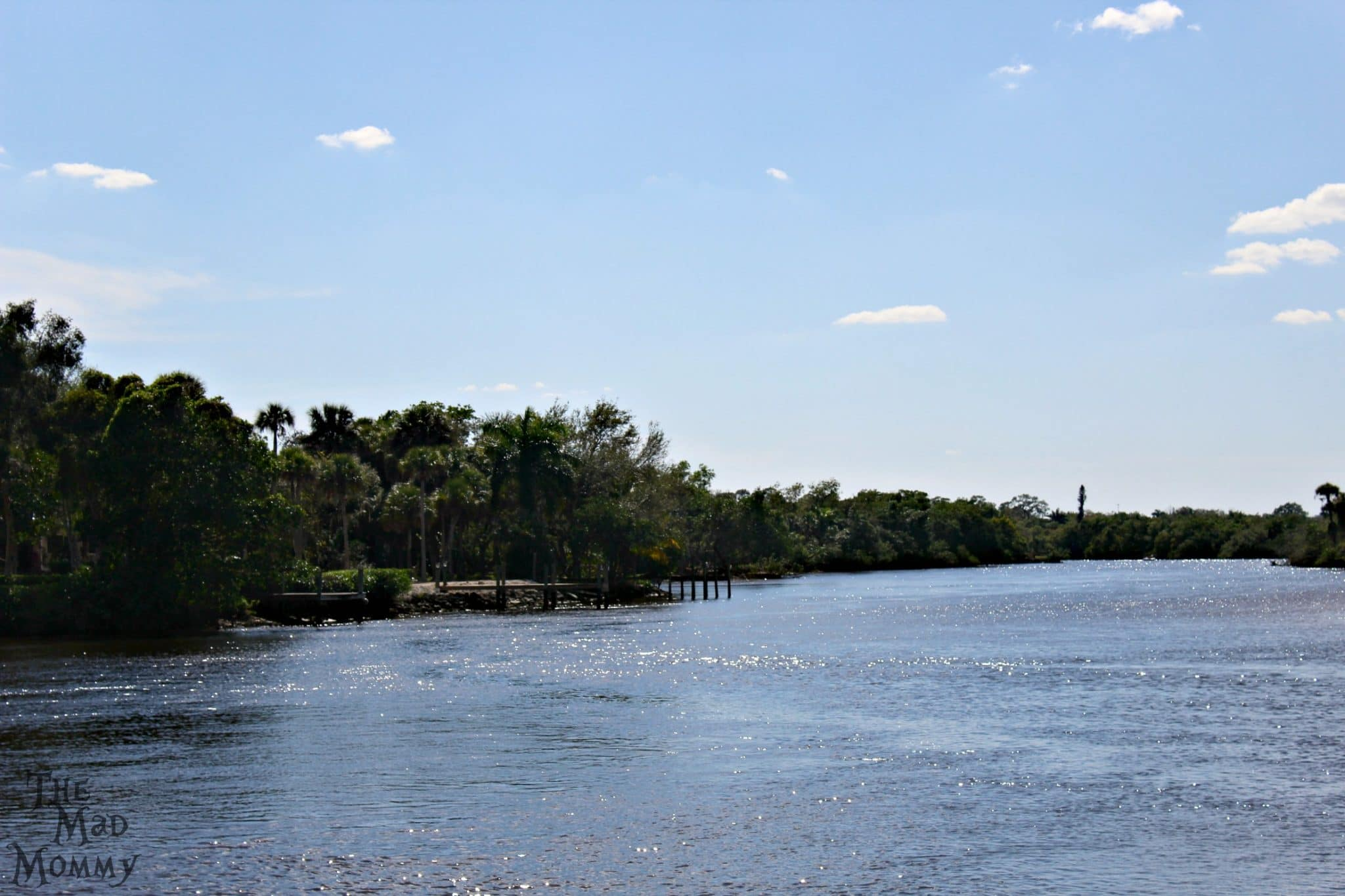 The canals and waterways at Manatee Park are beautiful.