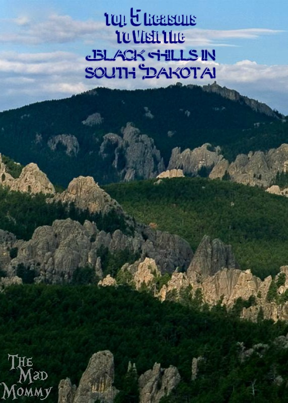 There are opportunities to travel and see wonderful things all over the United States, but there is one place where you can experience history and natural beauty together. There are so many things to see and do, that you won't believe how easy it is to fill up a whole day! Here are the top 5 reasons to visit The Black Hills in South Dakota! #sponsored #HifromSD