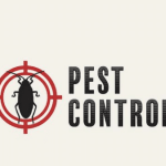 Why Electronic Pest Control Devices Are The Right Solution