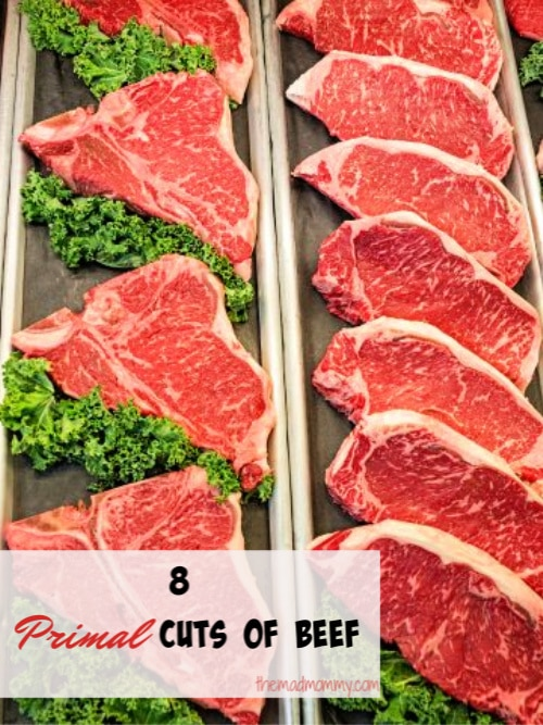 In this article, we will go over the list of American primal cuts of beef and their sub-primal cuts to help you get a better understanding of the food you intend to prepare.