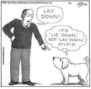 Grammar Dog