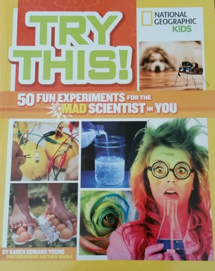 Try This! Science Fun Book review from The Maker Mom