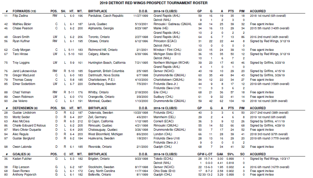 Briefly assessing the Red Wings' 2019 prospect tournament team (a.k.a. who are these guys?)