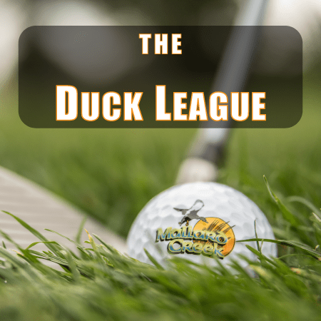 The Duck League