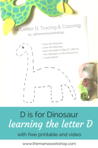 Letter D Activity Worksheet & Video