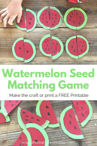 Watermelon Seed Matching Game