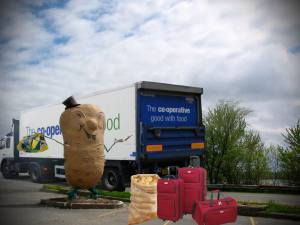 Harvey's Big Potato skipping town for fear of being made into storm chips