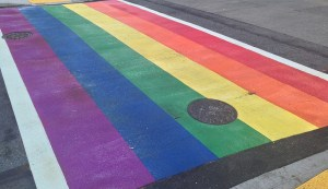 Fredericton woman shaken up after using rainbow crosswalk