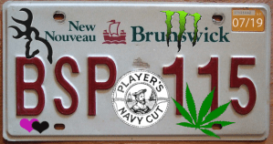 Province to let NB vehicle owners decorate their own licence plates