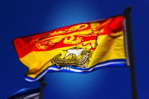 New Brunswickers found to be most gullible people in Canada
