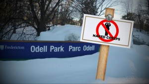 Residents suggest 'no naked creeps' signs for new Fredericton parks