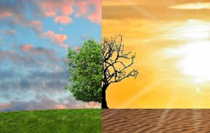 Listicle: Top 9 unexpected ways climate change will affect you