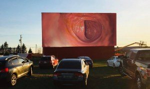 Sussex Drive-In livestreams your father's colonoscopy as 'premium event'