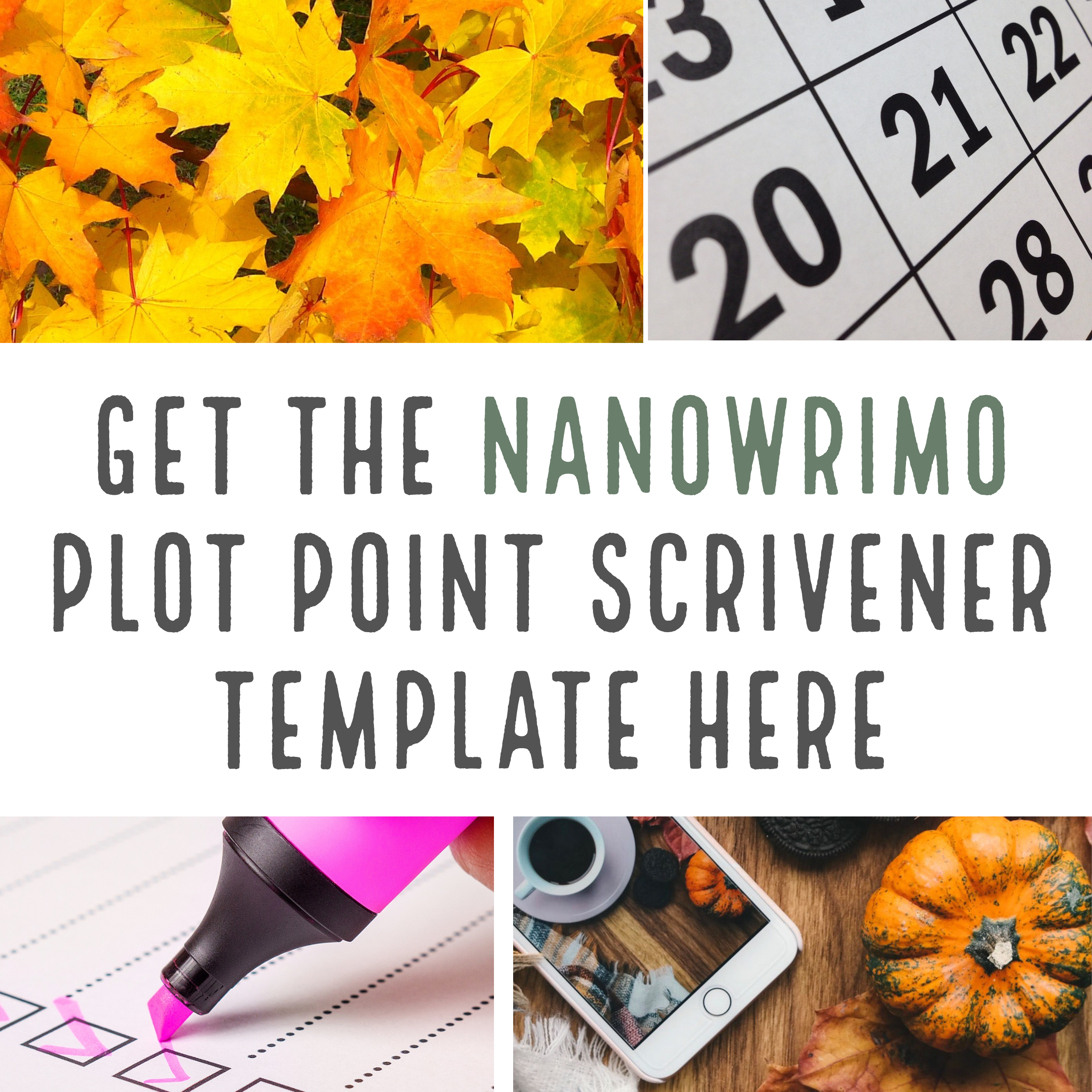 NaNoWriMo Plot Point Scrivener Template