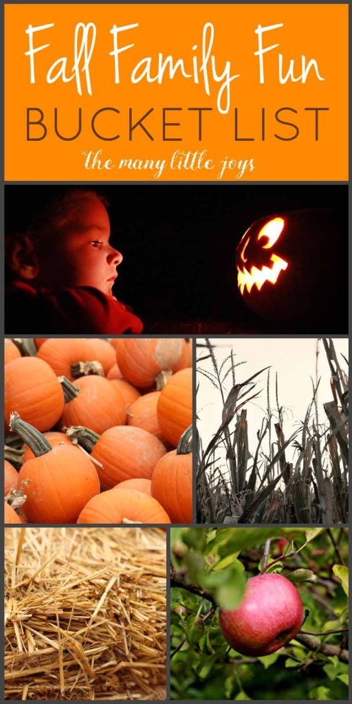 Celebrate the coming of autumn with this fun family fall bucket list. Be reminded of classic fall activities, and discover some new traditions to try as well!
