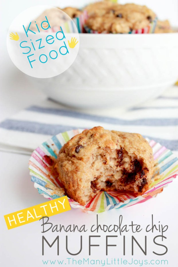 Want a healthy and delicious snack for the whole family to enjoy? Make a big batch of these easy banana chocolate chip muffins, pop the extras in the freezer, and you'll be ready when your little hungry hippos come nosing around.