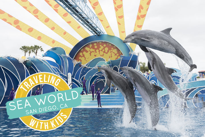 Planning a family trip to Sea World? Here is everything you need to plan a perfect day at Sea World San Diego--especially for families with young kids.