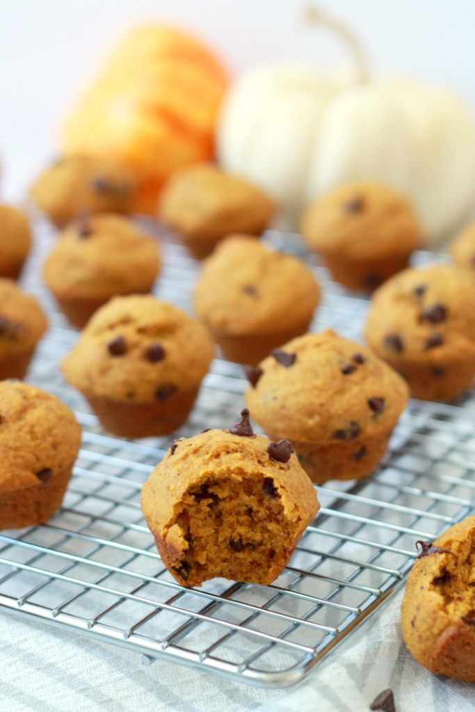 These bite-sized pumpkin chocolate chip muffins are the perfect afternoon snack or make-ahead breakfast. Plus, they're full of healthy ingredients, so you can feel totally justified in having seconds...or more!