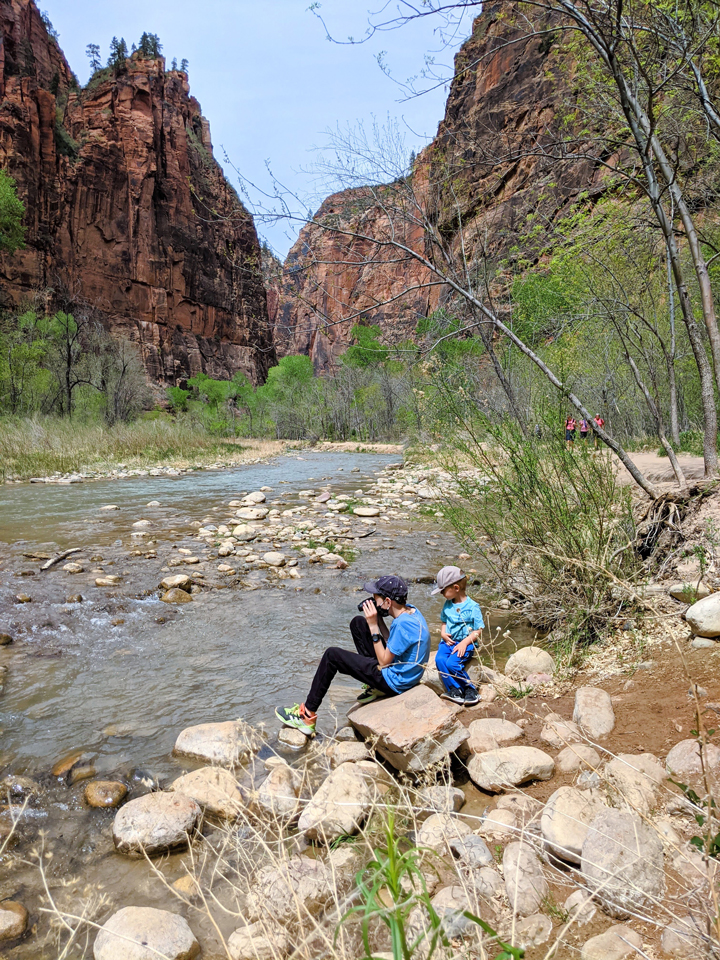 What to do in St. George with kids: Riverside Walk Trail in Zion National Parl