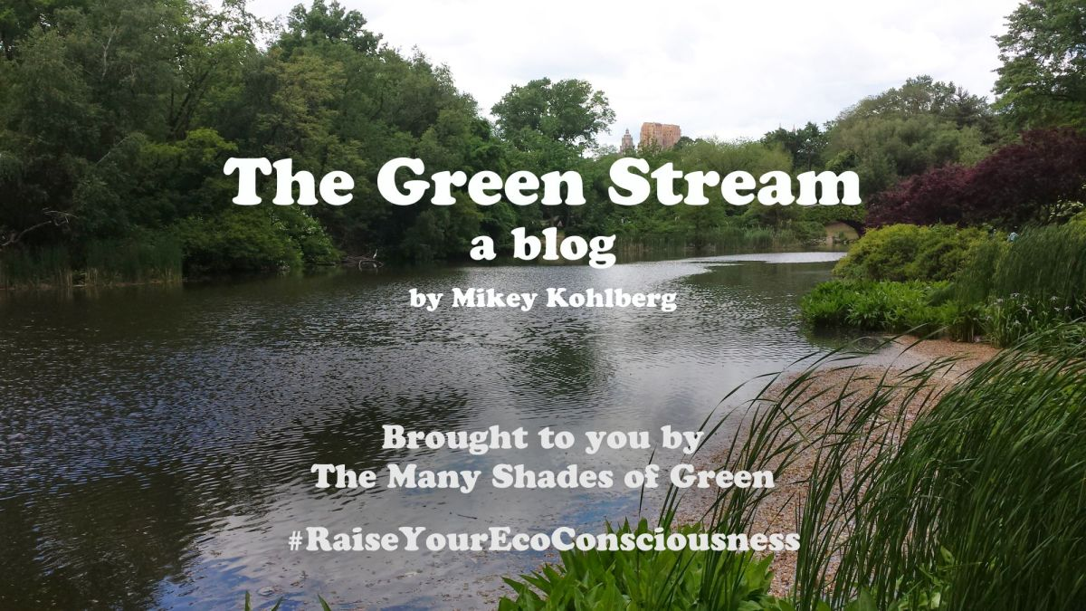 The Green Stream: Welcome to The Green Stream