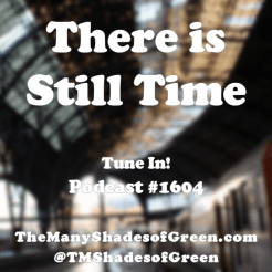 There-is-still-time-Peter-Seidel-The-Many-Shades-of-Green-promo