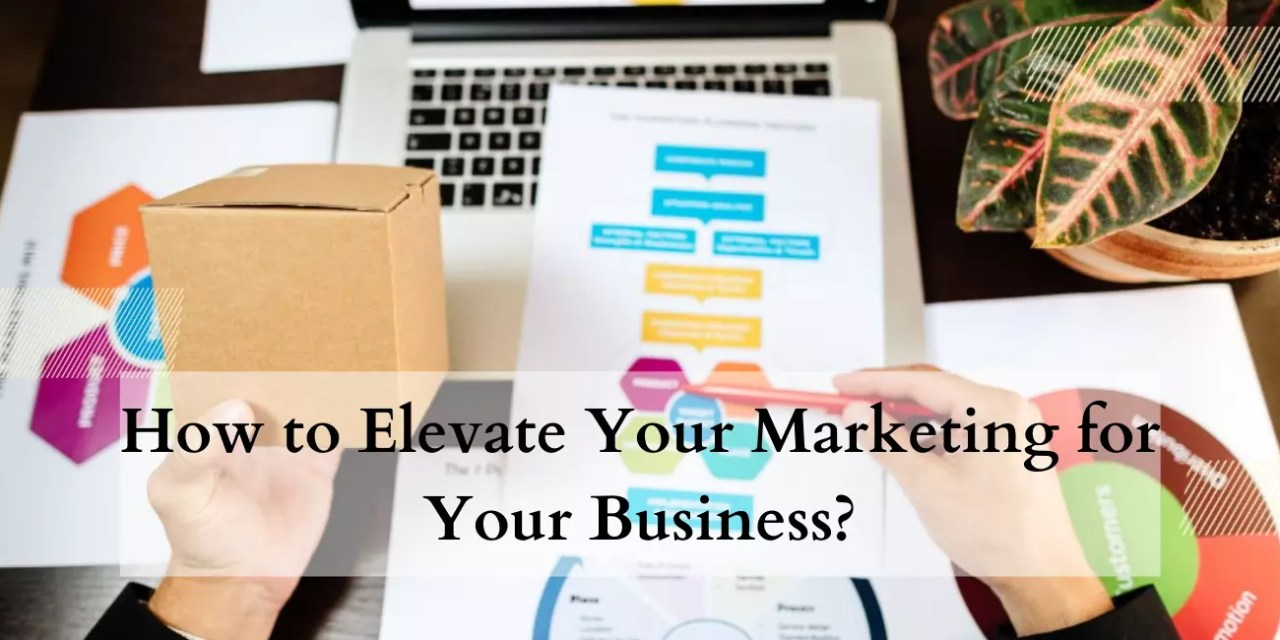 How to Elevate Your Marketing for Your Business?