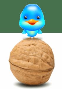 social media in a nut shell