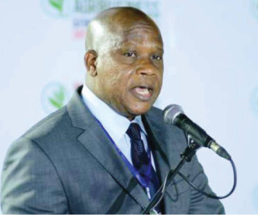 Agribusiness Attracts 375m Funding From Banks – NIRSAL MD