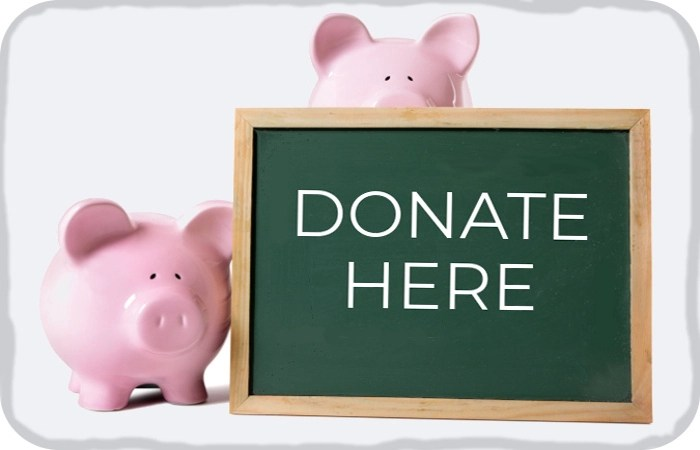 "piggy banks holding a ""Donate Here"" sign"