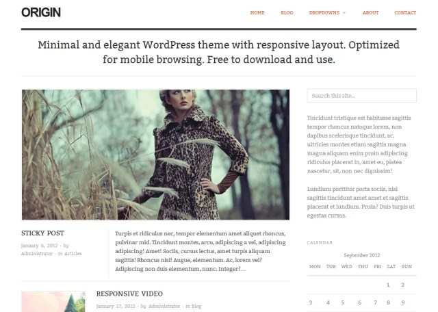 Origin Free Premium WordPress Theme 2012