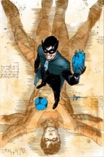 Nightwing 19 Cover