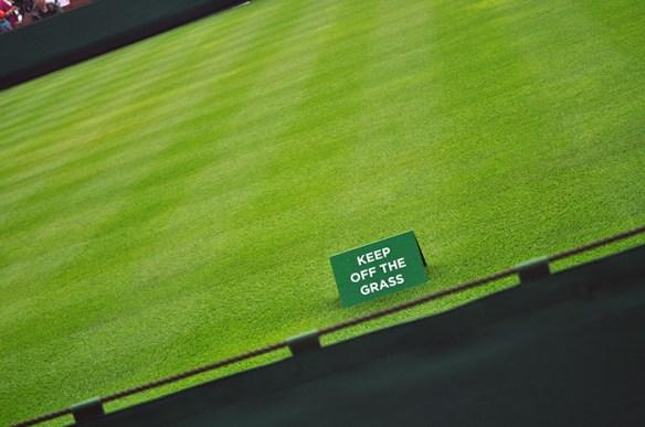 DSC_0006 Grass