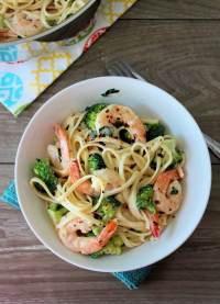 Broccoli Shrimp Alfredo Recipe