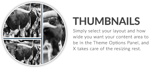 X | The Theme - 40