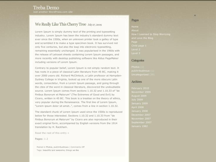 Screenshot of the Treba theme